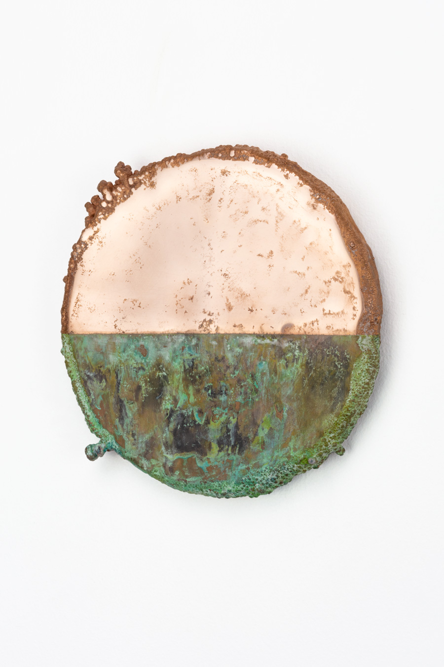 Disc, 2019